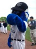 Boomer's Mascot Mania, Postgame Autographs & Play Catch on the Field