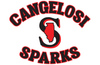 Cangelosi Sparks 11U host TBA